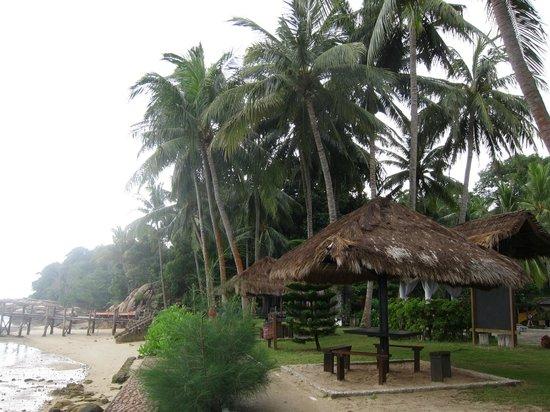 Turi Beach Resort: seaside