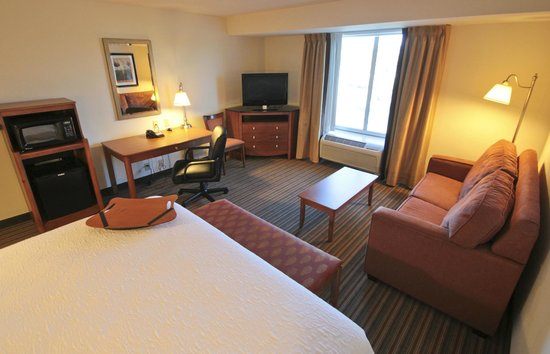 Hampton Inn Hampton-Newport News: King Room with Sofa Bed