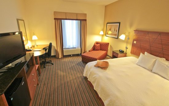 Hampton Inn Hampton-Newport News: King Rooms