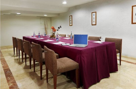 Eurostars Mediterranea Plaza Alicante: Meeting Room