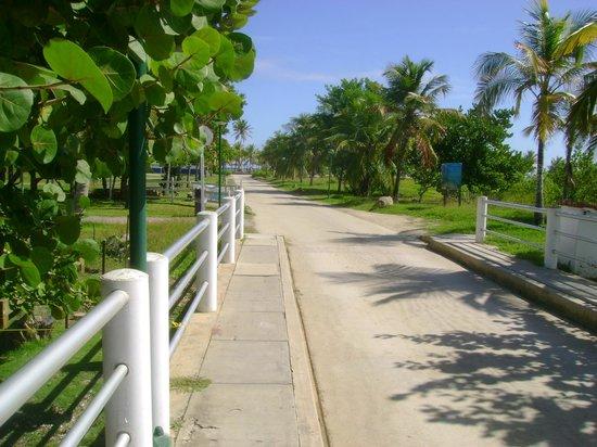 Laguna Mar照片