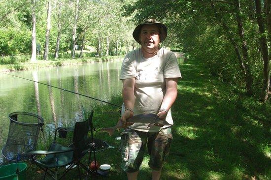 La pêche dhiver sur kame sur la perche de vidéo