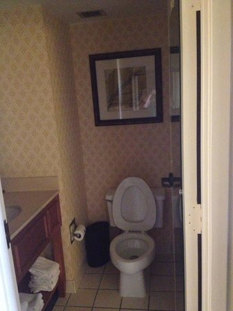 Embassy Suites by Hilton Orlando International Drive Jamaican Court: bathroom