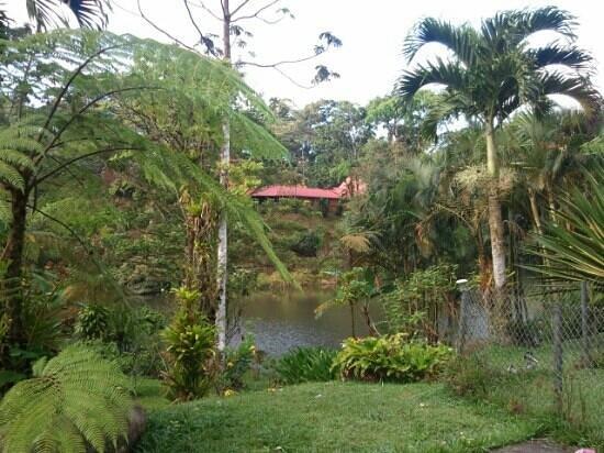 Restaurante Caballo Negro : Lake @ Caballo Negro