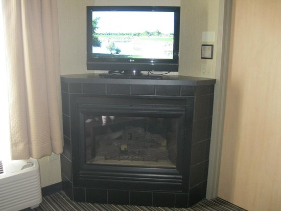 Hampton Inn and Suites Chicago Lincolnshire :                   fireplace (that did not work)