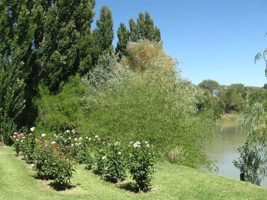 Posada Los Mimbres: Parque. Río Chubut