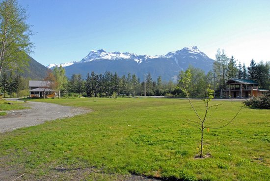 Bella Coola Grizzly Tours Inc.: View from your Cabin.