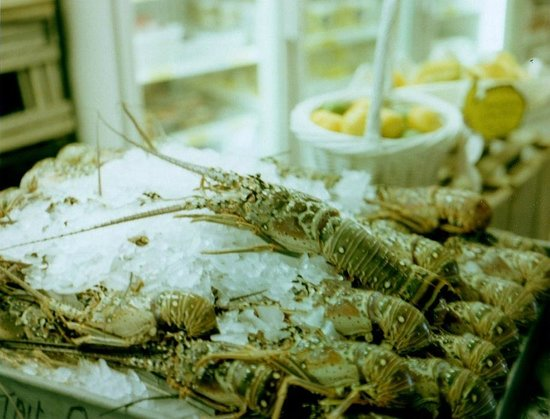 Yum fresh lobster picture of key largo fisheries for Key largo fish market