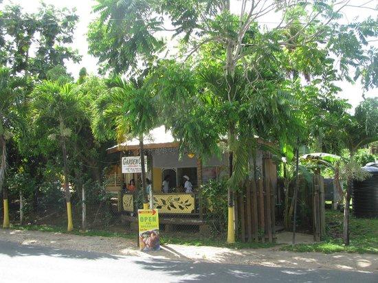 Kia's Across from The Beach: garden cafe