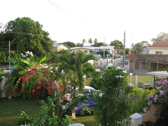 Kia's Across from The Beach: garden