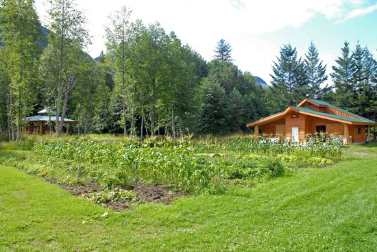 Bella Coola Grizzly Tours Inc.: Organic Garden.