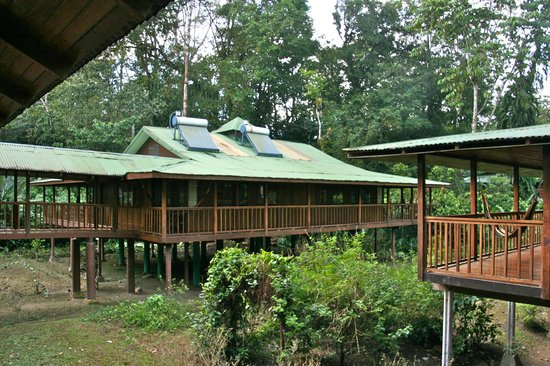 Selva Verde Lodge: Lodge rooms at Selva Verde
