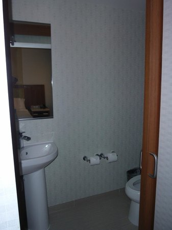 SpringHill Suites Temecula Valley Wine Country: Separate water closet