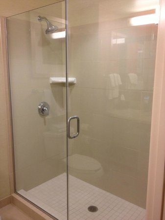 Courtyard San Jose Campbell: Large walk-in shower