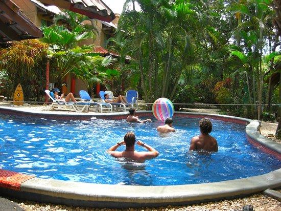 Hotel El Manglar: Pool