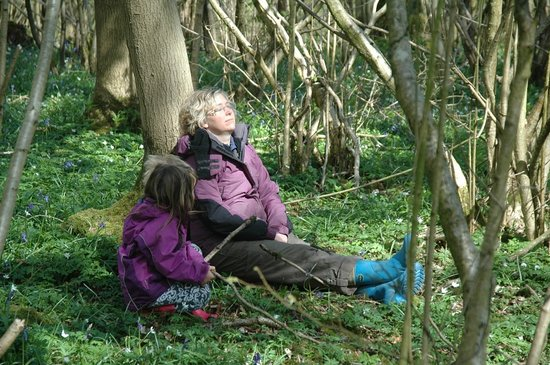 Woodmatters Bush Craft and Wood Courses: Taking in the beautiful woodland surroundings