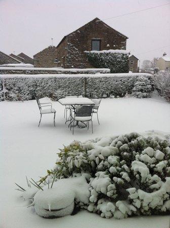 Yoredale House Guesthouse and Hamilton's Tea Room: Snowy tea garden