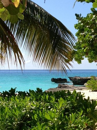 Sunshine Suites Resort: Smiths Cove near downtown. You will fall in love with Cayman! All it takes is once!