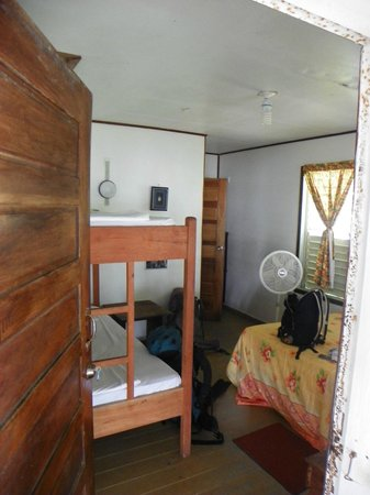 Tobacco Caye Lodge:                   room