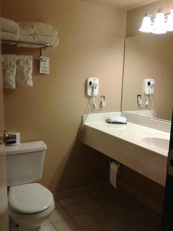 Temple Gardens Hotel & Spa: Clean bathroom