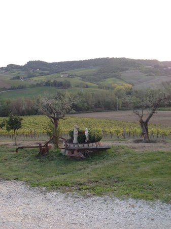 Agriturismo Cioccoleta:                   View from the front porch