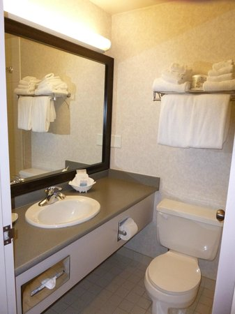 Best Western Plus Carlton Plaza Hotel: Bathroom was recently refreshed with new surfaces.