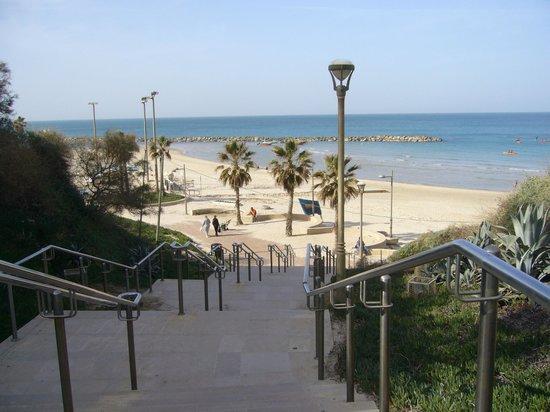 Residence Beach :                   Лестница на пляж