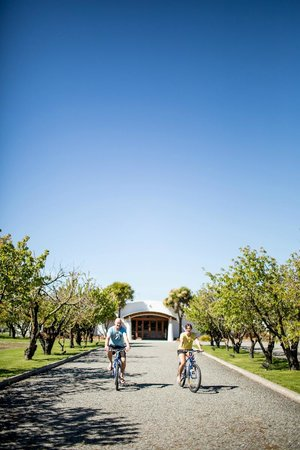 Marlborough Vintners Hotel: Biking the Vines