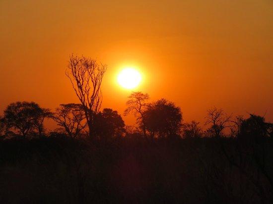 Wilderness Safaris Davison's Camp:                   Unbeleivable sunsets