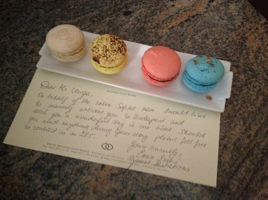 Sofitel Budapest Chain Bridge:                   macarons as a welcome