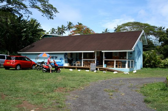 Cook Islands Whale and Wildlife Centre: The Bright Blue Building, can't miss it now !!