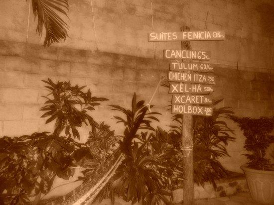 Suites Fenicia: area de hamacas