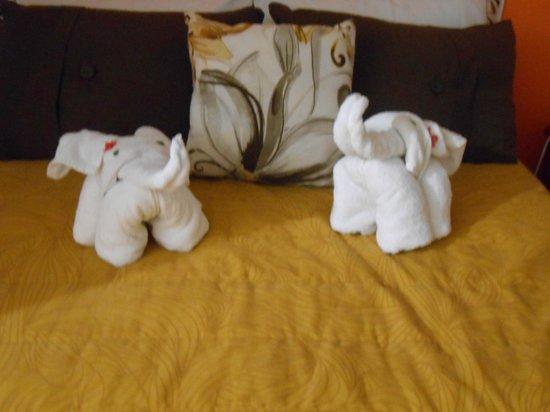 Suites Fenicia: hermosos detalles sobre las camas