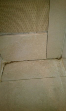 Hilton Hasbrouck Heights / Meadowlands:                   Bathroom grout