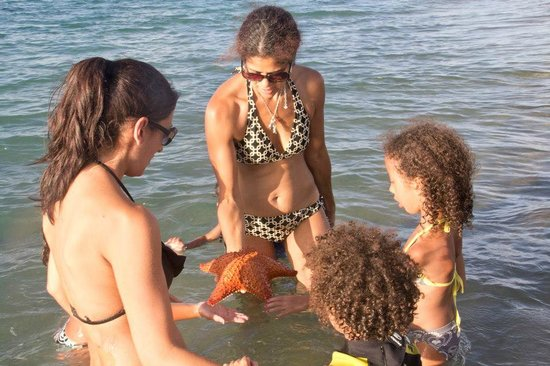Nelson Spring Beach Resort:                   Finding Starfish, Sanddollar, Sea Shells