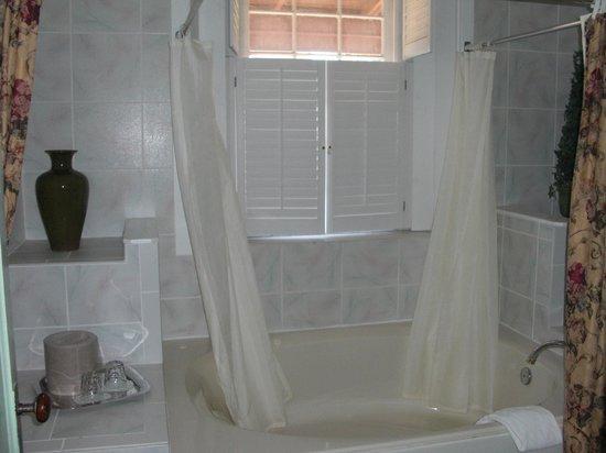 Casa de Solana Bed and Breakfast:                   Montejurra Room tub/shower