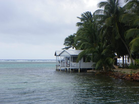 Tobacco Caye Paradise:                   The cabanas.