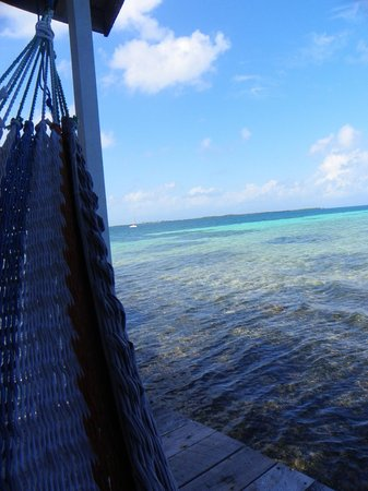 Tobacco Caye Paradise:                   Hammock on the deck!