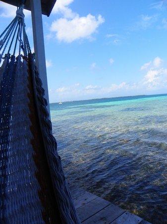 Tobacco Caye Paradise 사진