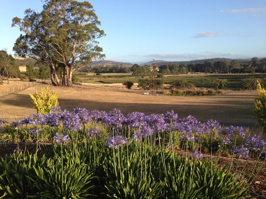 Duffy's Country Accommodation:                   Relaxing country view from Cottage verandah