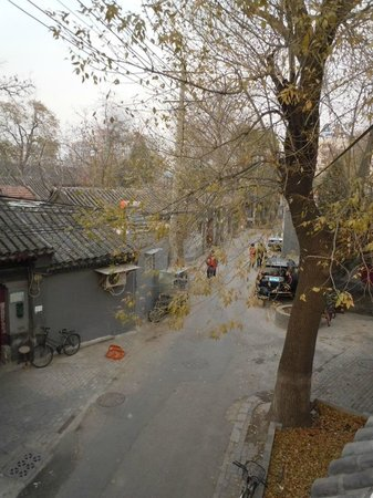 Hotel Cote Cour Beijing:                   From roof looking out into Hutong