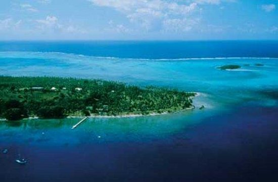 Jean-Michel Cousteau Resort: Aerial view of the resort