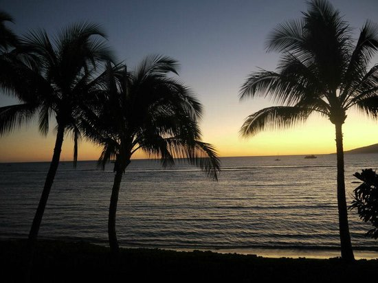 Lahaina Shores Beach Resort:                   The view out our huge windows every night