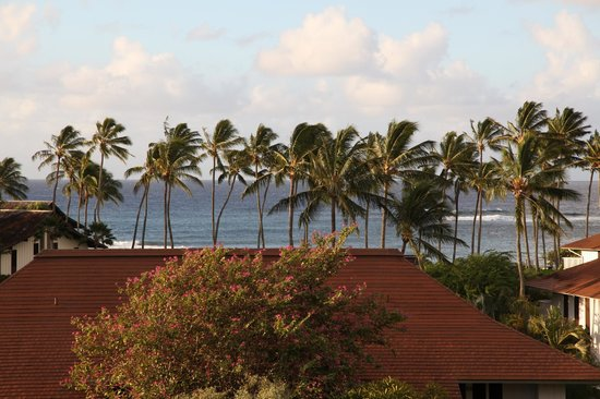 Kiahuna Plantation Resort:                   Room with a view!
