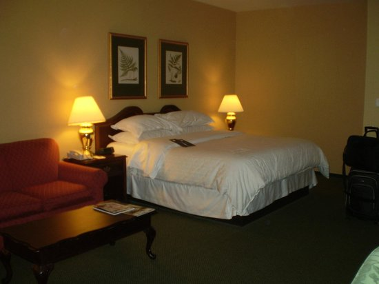 St. Louis City Center Hotel: King Bed