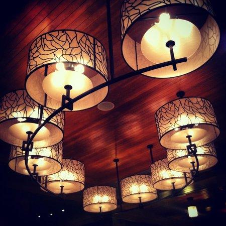 نيتا ليك لودج:                   The gorgeous lobby light                 