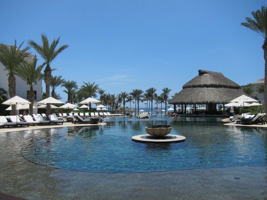 Cabo Azul Resort:                   swim up bar