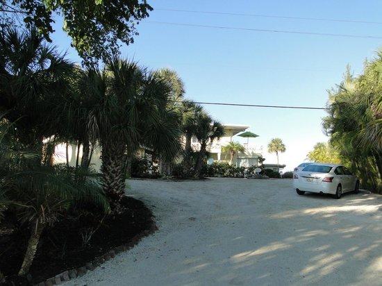 Pearl Beach Inn: Parking area