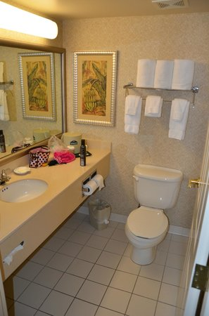 Home2 Suites by Hilton Miramar Ft. Lauderdale:                   banheiro