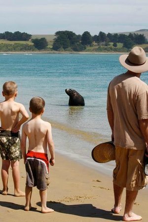 Catlins Newhaven Holiday Park: Beach overlooked by Newhaven
